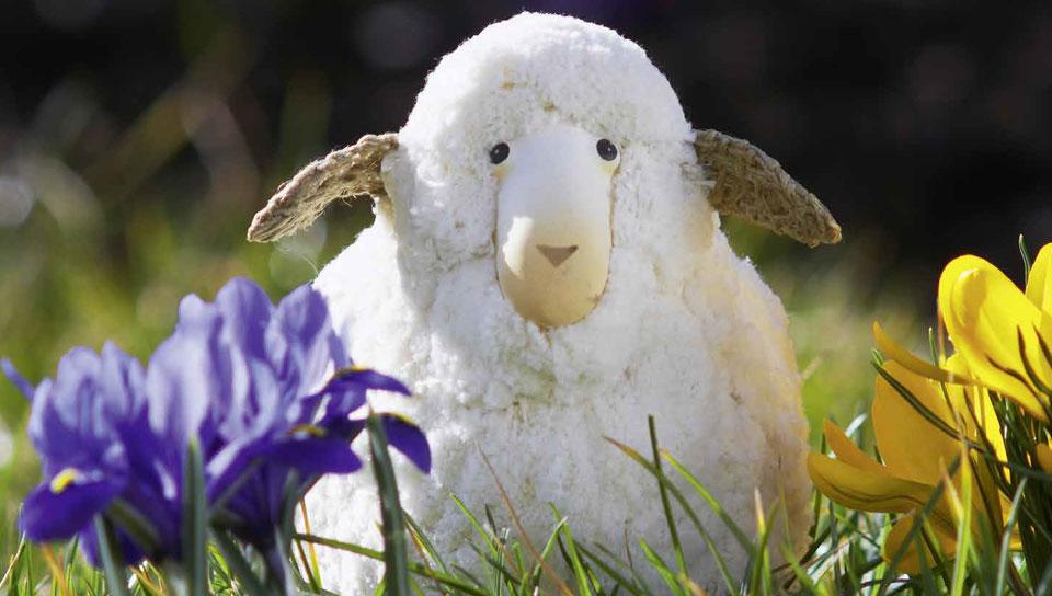 Frühling ist die schöne Jahreszeit, in der der Winterschlaf aufhört und die Frühjahrsmüdigkeit beginnt.