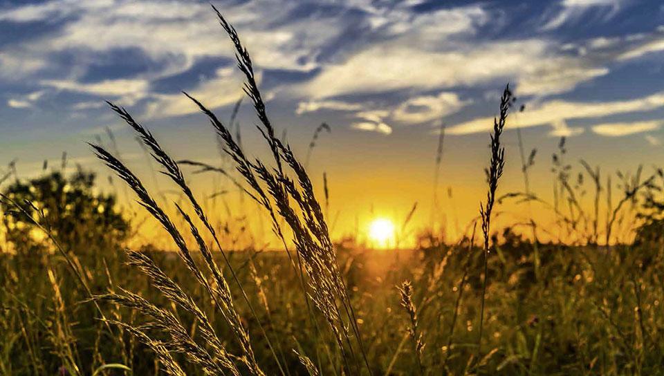 Der Sommer, der vergeht, ist wie ein Freund, der uns Lebewohl sagt