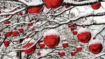 Weihnachten kennt keine Grenzen. Es verbindet Kulturen, Geschlechter, Kinder und Erwachsene, Arm und Reich.